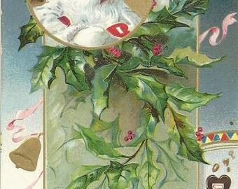 Christmas Greetings Raphael Tuck Santa Claus Postcard