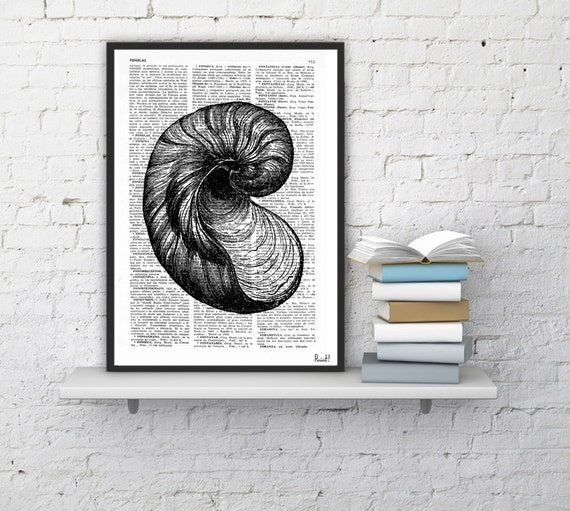 Spring Sale Book Print Dictionary or Encyclopedia Page Print- Book print Sea Shell V Print on Vintage Dictionary Bookart art BPSL038