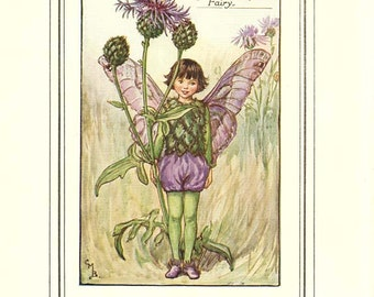 The GREATER KNAPWEED FAIRY Vintage Book Plate c 1940 Book of the Flower Fairies Original Page Cicely M Barker