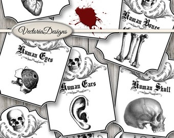 Dr. Boneman Apothecary Labels printable ink saver Halloween Gore Jars Paper Crafting instant download digital collage sheet - VDAPHA1522