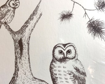 Vintage Set of 24 Woodland Owl Forest Friends Stationery Card Stock Note Cards Envelopes NOS w/cellophane Artist Drawings by James Heady