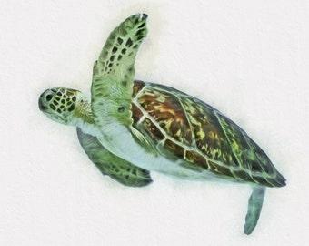 Sea Turtle Wall Art sea turtle wall art | etsy