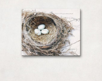 Bird's Nest Decor, Rustic Nature Photography, Canvas Wall Art, Farmhouse Chic Decor