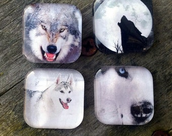 Wolf Glass Magnet Set, Wolf Magnet Collage, Wolf decor, Fridge Magnet, Kitchen Magnets, Cubicle decor, Office supplies, Wolf Magnets, Gifts
