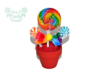 Mini Rainbow candy arrangement, lollipop favor, rainbow favor, rainbow wedding favor, edible rainbow candy favor, party favor, rainbow theme