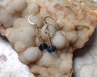 Blue Denim and Gold Dangle Earrings