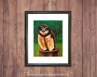 Owl Print from Original Oil Painting, Spectacled Owl