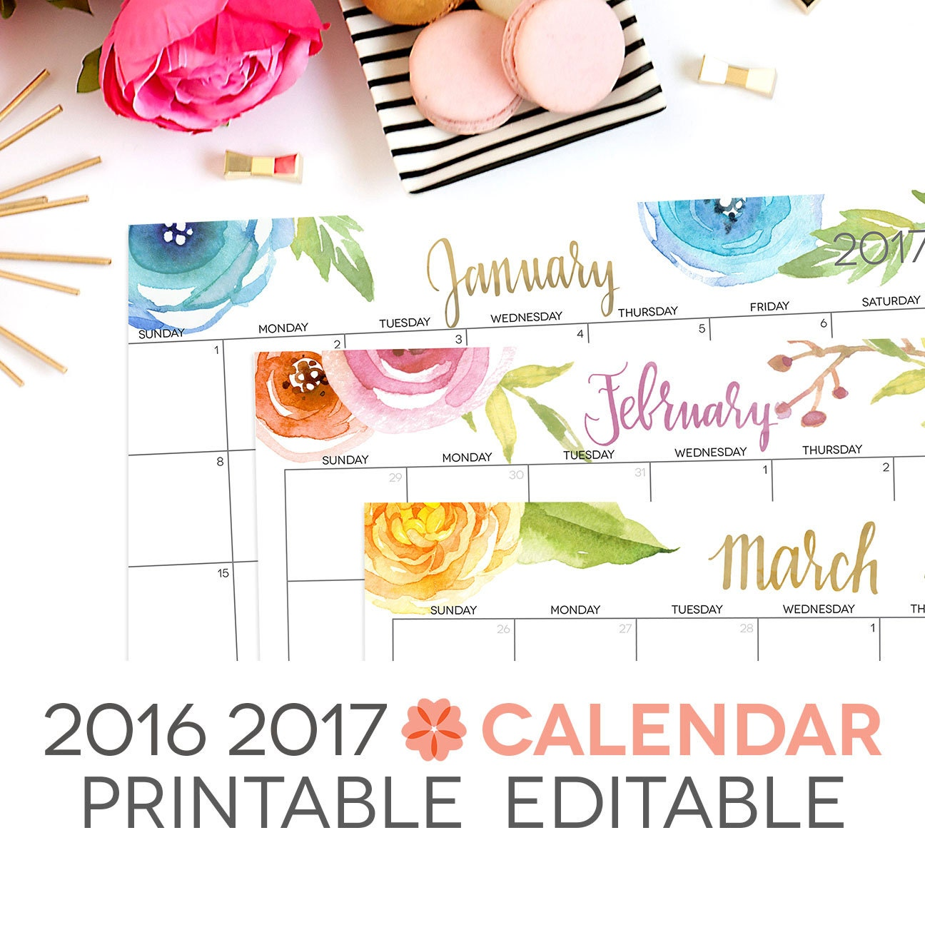 2017 Calendar Printable Editable Digital by PerennialPlanner