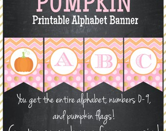 Little Pumpkin Banner Pink, Orange, Glitter Gold Chevron - Printable Alphabet - Instant Download