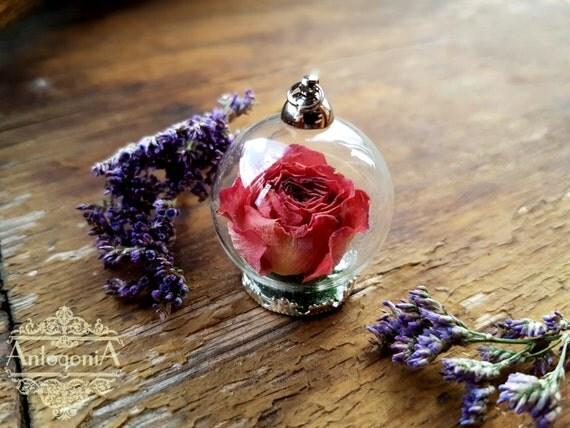 rose in bottle terrarium necklace glass dome flowerdried. Black Bedroom Furniture Sets. Home Design Ideas