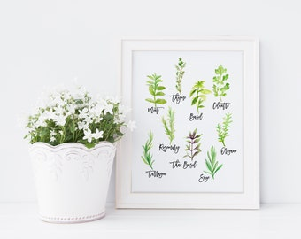 Herb Print - Kitchen Art - Kitchen Decor - Plant Print - Botanical illustration, Wall hanging, Country Kitchen Decor, Gift for foodie (1044)