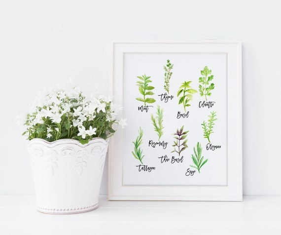 Https Www Etsy Com Listing 386836700 Herb Print Kitchen Art Kitchen Decor