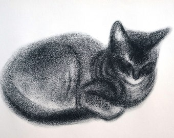 Clare Turley Newberry - 1956 - Sweet Sleeping ABYSSINIAN FEMALE KITTEN w Black Stripe  -  Professionally Matted Cat Print Ready to Frame