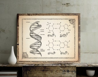 Ancient Style DNA with Chemical structure Poster, science art print, wall decor, 8 x 10 in, 11 x 14 in