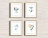Poppies and Tulip Flowers - Watercolor Art Print - Set of 4 - Bedroom Neutral Decor - Nursery - delicate room