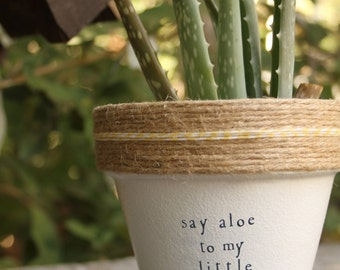 """4"""" Scarface """"Say Aloe to my Little Friend"""" » Aloe Indoor and Outdoor Pot or Planter"""