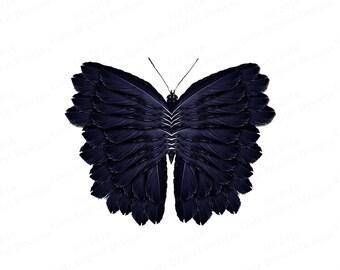 Butterfly Clipart, Butterfly Clip Art, Clipart Butterfly, Clip Art Butterfly, Clipart Bug, Clipart Bugs, PNG Butterfly, PNG Butterflies