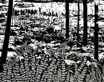 Process of Success(ion)- Yosemite Linocut Relief Print 24 x 18 Black & White, ecology, science, National Park, Rejuvenate, fire, landscape