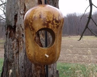 Gourd Bird Feeder Natural Apple with Perch