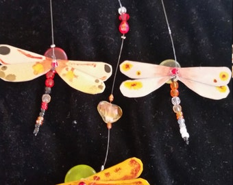 Dragonflys and more