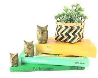 Vintage Brass Owl Figurine Set, Owl Family, Gold Owls, Brass Paperweight, 1960s Owl Decor, Mid Century Owl Statue, Woodland Nursery Decor