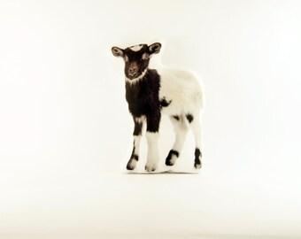 Black and White Goat Photo Pillow, Goat Pillow, Farm Animal Pillow