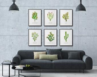 Cactus Succulent Watercolor painting, Succulent print, Southwest art, Set of 6 Botanical print, Green wall art, Desert print