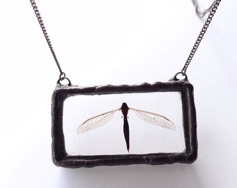 Real flying bug necklace. Dead real dragonfly look-a-like preserved in resin.3D.Handmade,rectangular resin pendant.Dead bug caught in resin.