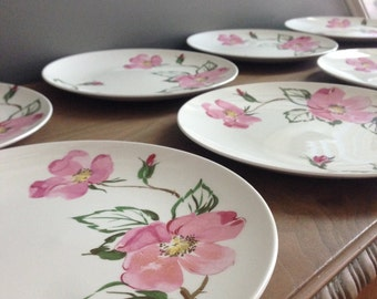 Vintage Knowles (Accent Shapes By Knowels) Sweetbriar x-2241-0 Dinner Plates