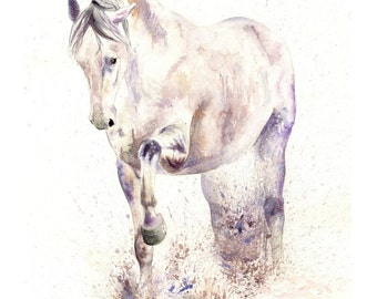 Beautiful Equine horse art Spanish movement based print from an original watercolour individually signed