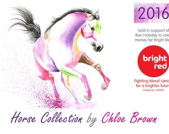 horse animal Calendar 2016 - supporting Ben Hobdays chosen Charity