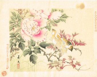 "1894, Japanese Woodblock print, antique, Matsumura Keibun, ""Canary and Peony"""