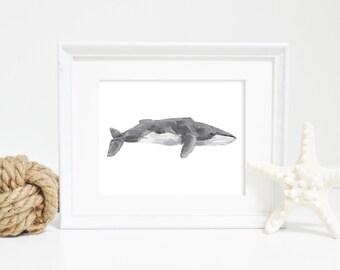Whale Print, Fin Whale,  Printable Art, Printable Whale, Whale Wall Art, Nautical Decor, Beach Decor, Whale Art Print, Nursery Artwork