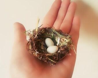 Tiny nest with eggs, Terrarium Accessory, Fairy Garden Bird nest, fairy bird nest,Flower nest, egg nest, fairy garden accessories