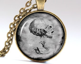 Medicine Necklace, Skeleton Pendant, Skull Jewelry Pendants Necklaces Jewellery LG080