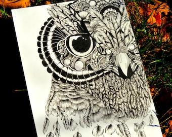 Zentangle Owl Print