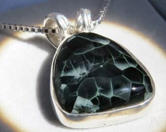 isle royale greenstone pendant chlorastrolite michigan
