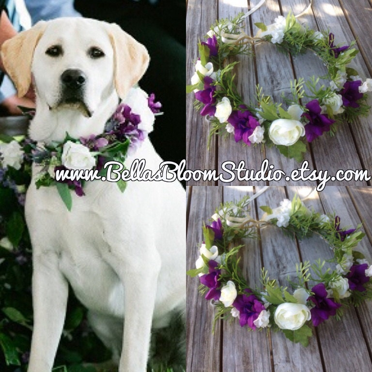 dog of honor dog wedding collar pet wedding by bellasbloomstudio