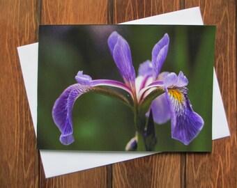 Flower Greetings card C5 Iris