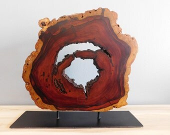 Cocobolo Branch Sculpture
