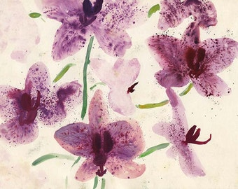 Orchids Watercolor