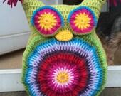 Rainbow Owl Cushion Crochet Pattern