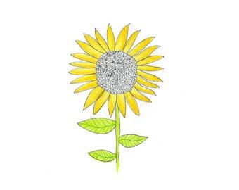8x10 art print -- sunflower -- flower art