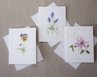 Notes from the Garden, blank botanical note cards, package of 6, 2 each of 3 designs