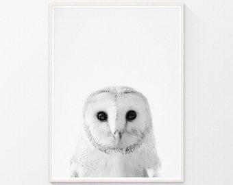 Baby Nursery Art, Owl Print, Nursery wall art, owl art, baby room decor, Nursery animal art, owl decor, Animal Art, kids print, Animal Photo