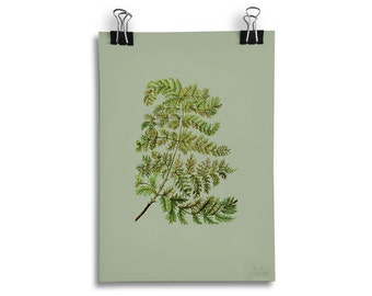 Fern Leaf Botanical Print A5 Wall Art
