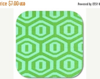 ON SALE Amy Butler Midwest Modern Honeycomb in Ice fabric 1 yard AB25