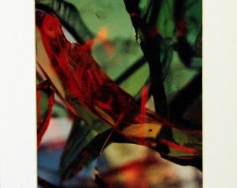 Fine Art Photography, Abstract Photography, Serene Chaos Series, Broken Glass