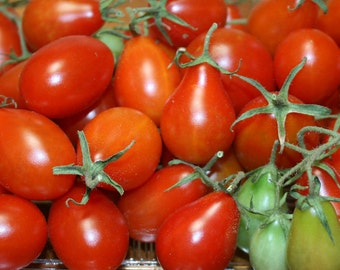 Cherry Tomato- Red Pear- aka Bottle tomato - 75 day- determinate- 25 seeds