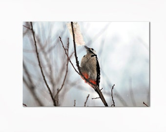Bird Woodpecker Digital File Wall Art Home Decor Wall Hanging